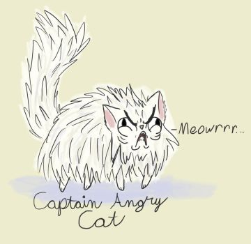 Angry Cat by notpolydactylic