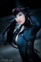 Catwoman - 01 by shiroang