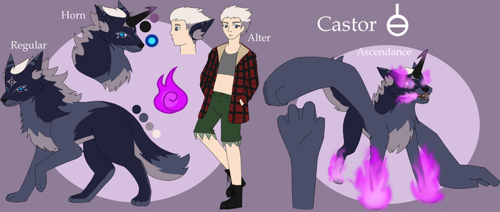 RohKuh Ref Sheet: Castor by NotoriousDogfight