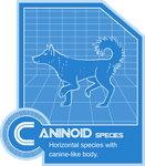 Caninoid Species Folder Info by pandemoniumfire