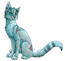 Prize - Baby-face by Finchwing