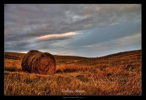 Rolling Straw 2 by Sagittor