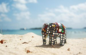 Dhonveli the Elephant by ewensimpson