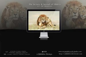 The Scents and sound of Africa by y2jhbkfan