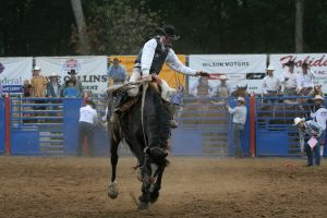 rodeo 01: saddle bronc by cyborgsuzystock