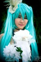 Vocaloid - Miku (Camellia) 6 by LiquidCocaine-Photos