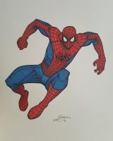 The Amazing Spider-Man 2 by lukesparrow