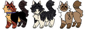 75 point flatsale adopts by sapphicool