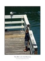 The boy and the seagull by dekleene