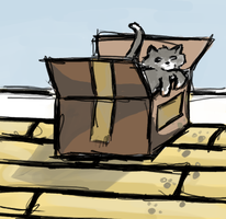 Cat in the Box by artloverrsnp