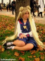 Autumn princess -Usagi Tsukino by uchimakiPro