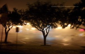 the Endless Haze by Taylorinchains