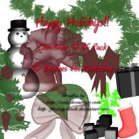 Christmas Stuff Brushes by firebug-stock