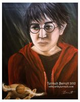 Harry Potter by Terrauh