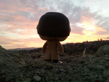 Funko Pop (Doctor Who) #2: Something is coming... by KrachArt