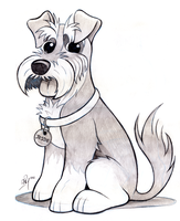 Schnauzer Caricature by timmcfarlin
