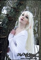 Winter faun by TatharielCreations