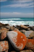 Cape Of Good Hope I by cdastudio
