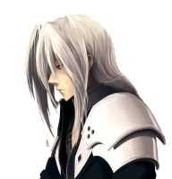 Sephiroth wip by Butjok