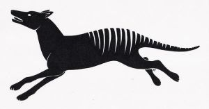 Thylacine Tshirt Design by Shara-Moonglow