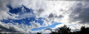Sky! Free in the clouds (Sky Panorama) by T-20-A-20
