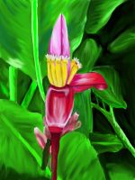 Caribbean Flower by abflabby