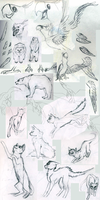 Sketchdump #1 by jebANON