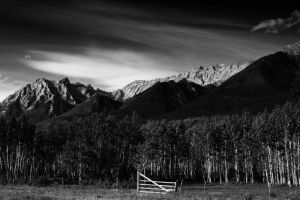 BW Bow Valley by vindego