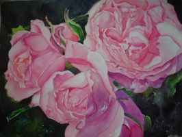 3 Pink Roses and a Bud by p-e-a-k