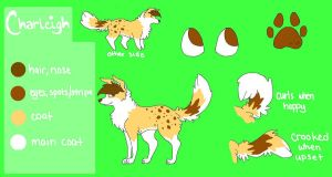 Fursona Reference 2010 by DerpMuffin