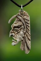 the head of an indian by manuroartis