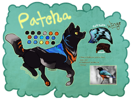 Patcha Ref by onlyhalfpigeon