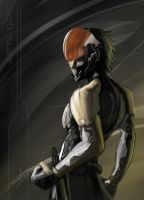 Raiden by Alpha-Step