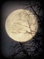 the halloween moon by Riferthy