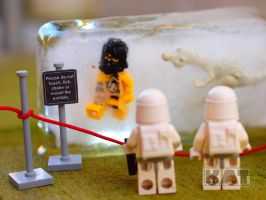 The Snowtroopers At The Museum by mckatalyn