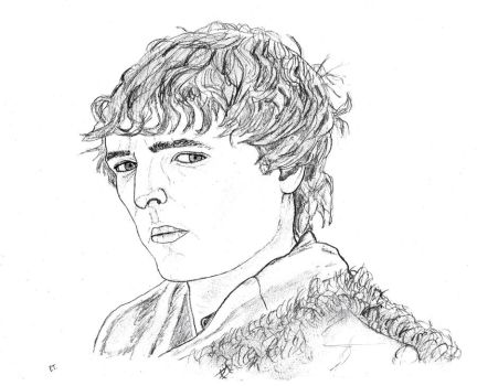 Sir Mordred by Dodie59