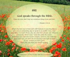 Bible Refresher 41 - Read, Read, Read! by PoppyCorn99
