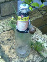 snails likes schweppes by wolfspiritsd