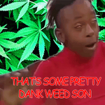 That's Some Pretty Dank Weed, Son (gif) by HuffytheMagicDragon