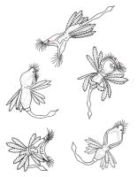 Rotifer sketches 1 - Colleen by Scutigera