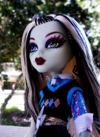 MH: Pretty FrankenGhoul by Mistralla