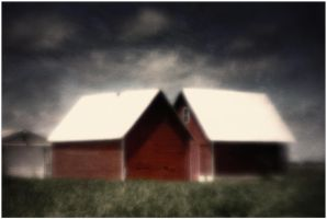 Two Red Barns by pubculture