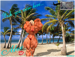 ALEX 3.0: POSTCARD FROM PARADISE... by SLMUSCLE