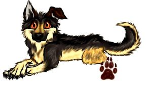 Sammy my Dog by Xmidnightblackwolfx