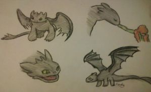 Toothless sketches by pokefan444