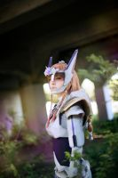 Zelda Cosplay, 2015 by AmandaAagard