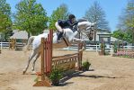 Another Hunter-Jumper 5-23-15 by Tailgun2009