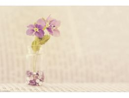 Hello Spring by Limaria