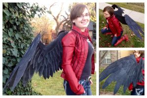 Black Cosplay Wings by ThePinkPoudo