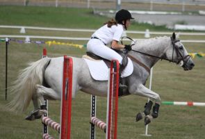 STOCK Showjumping 455 by aussiegal7